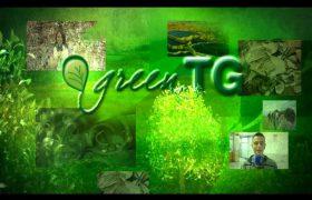 fame sigla green tg
